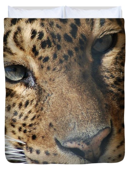 Duvet Cover featuring the photograph Leopard Face by Richard Bryce and Family