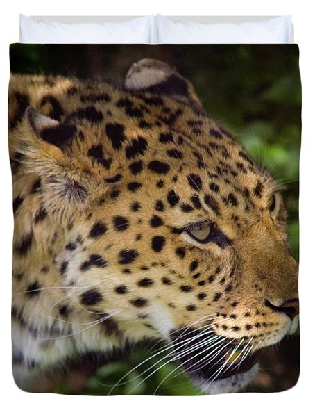 Duvet Cover featuring the photograph Leopard by Steve Stuller