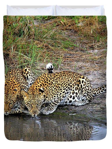Leopards Duvet Cover