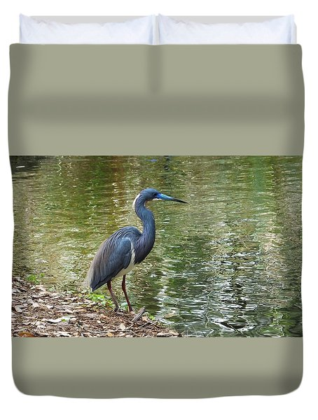 Lesser Blue Heron In Mating Plumage Duvet Cover