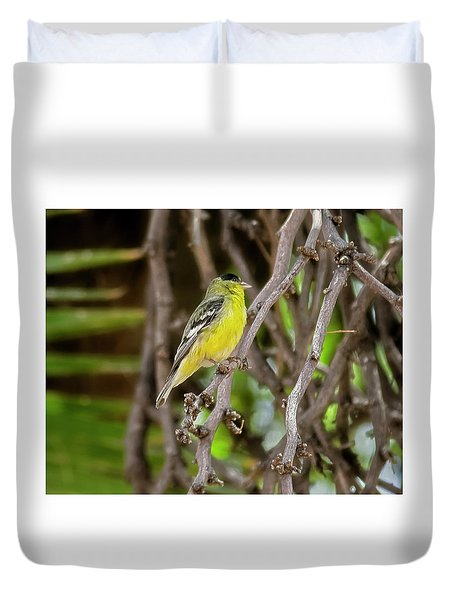 Duvet Cover featuring the photograph Lesser Goldfinch H57 by Mark Myhaver