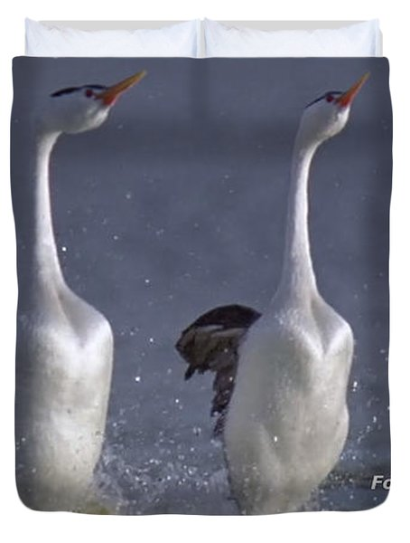 Let Humans Learn From The Nature  Foreplay Dance It Pleases Everyone Duvet Cover