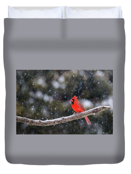 Duvet Cover featuring the photograph Let It Snow by Mircea Costina Photography