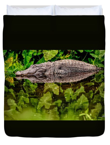 Let Sleeping Gators Lie Duvet Cover by Christopher Holmes