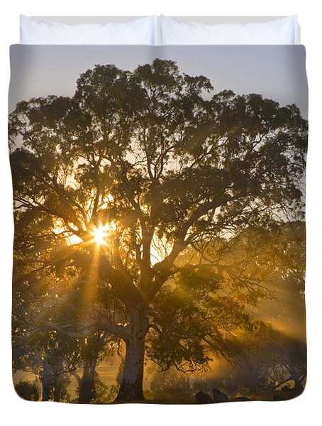 Let There Be Light Duvet Cover by Mike  Dawson