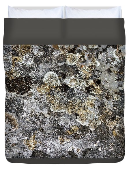 Duvet Cover featuring the photograph Lichen At The Cemetery by Stuart Litoff