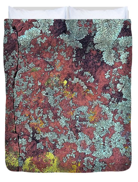 Lichen Colors Duvet Cover by Todd Breitling