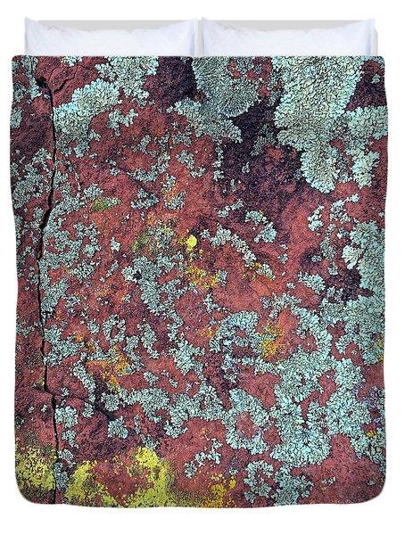 Lichen Colors Duvet Cover