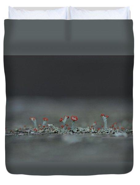 Lichen-scape Duvet Cover