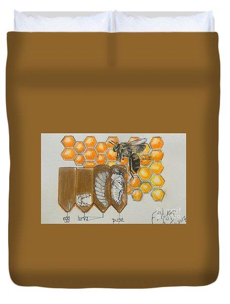 Life Cycle Of A Bee  Duvet Cover by Francine Heykoop