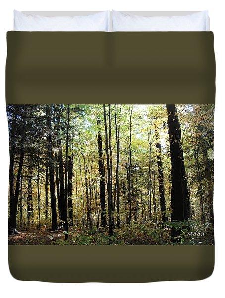 Light Among The Trees Duvet Cover by Felipe Adan Lerma