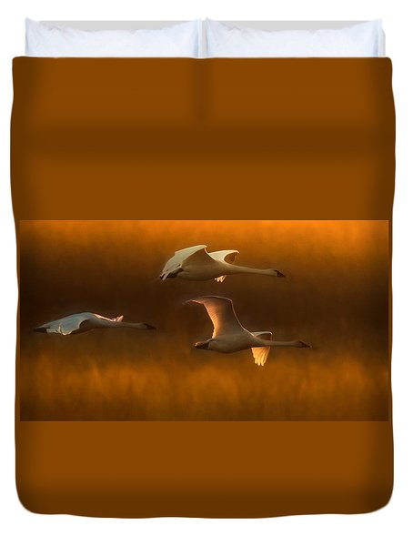 Duvet Cover featuring the painting Light by Kelly Marquardt