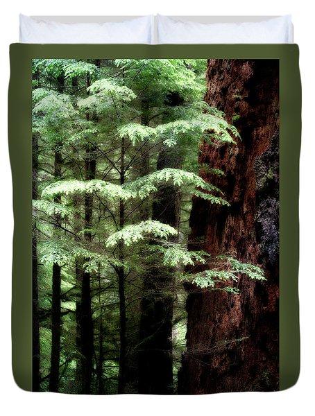 Light On Trees Duvet Cover