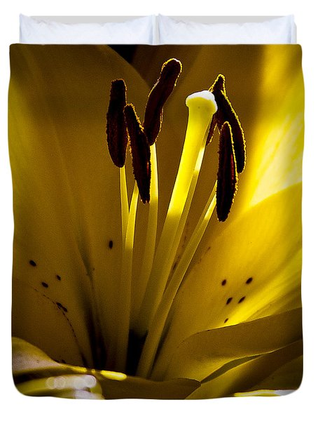 Lighted Lily Duvet Cover