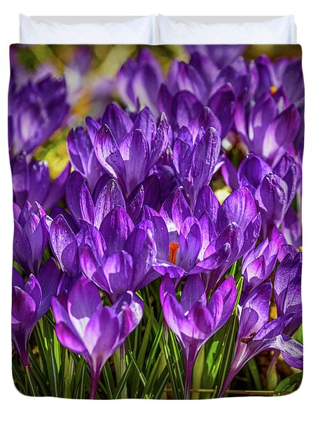 Lilac Crocus #g2 Duvet Cover