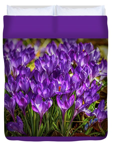 Duvet Cover featuring the photograph Lilac Crocus #g2 by Leif Sohlman
