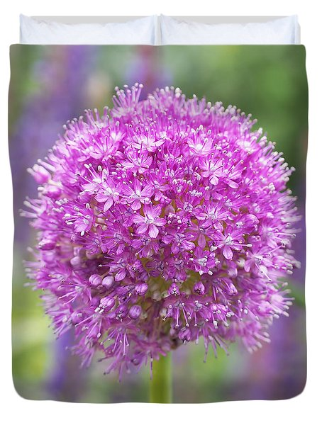 Lilac-pink Allium Duvet Cover by Rona Black