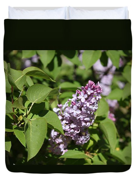 Duvet Cover featuring the photograph Lilacs 5551 by Antonio Romero