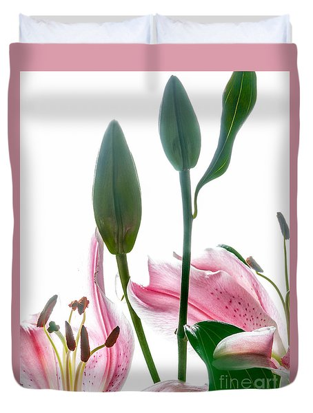 Duvet Cover featuring the photograph Pink Oriental Starfire Lilies by David Perry Lawrence
