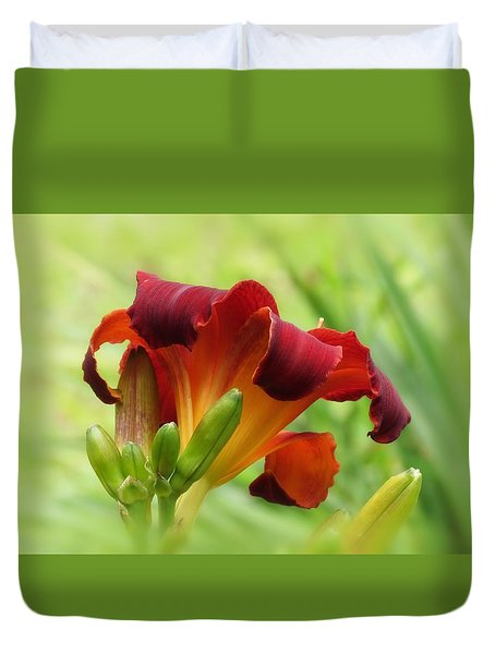 Lily Back - Daylily Duvet Cover by MTBobbins Photography