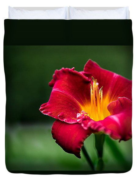 Lily Beauty Duvet Cover