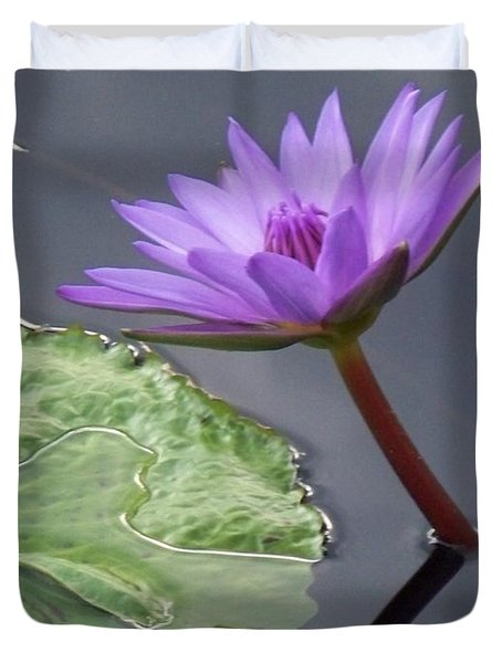Lily Pond Duvet Cover by Eric  Schiabor