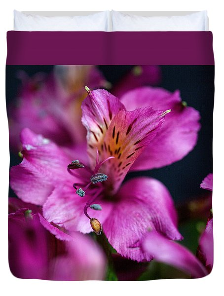 Duvet Cover featuring the photograph Lily by Susi Stroud