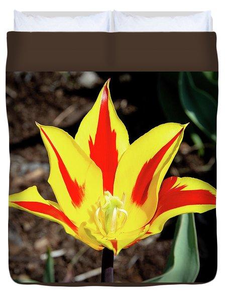 Lily Tulip Duvet Cover