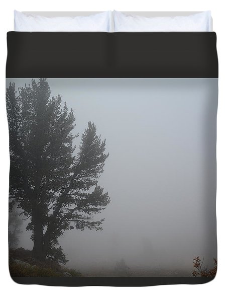 Limber Pine In Fog Duvet Cover