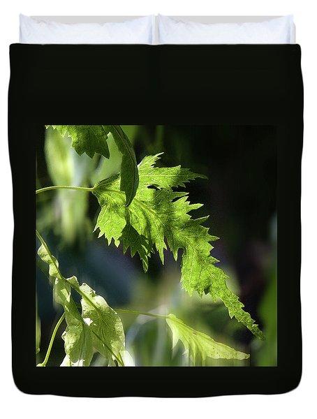 Linden Leaf - Duvet Cover