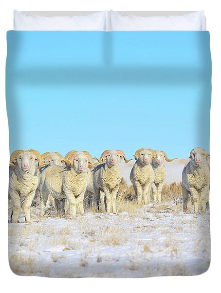 Line Em Up Rams Duvet Cover