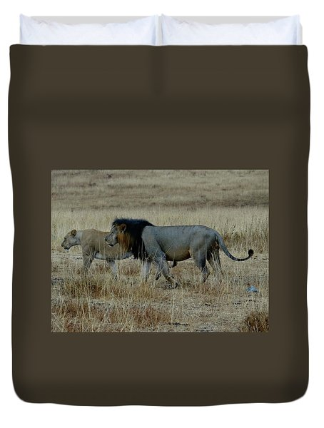 Lion And Pregnant Lioness Walking Duvet Cover