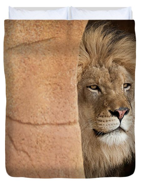 Lion Emerging    Captive Duvet Cover