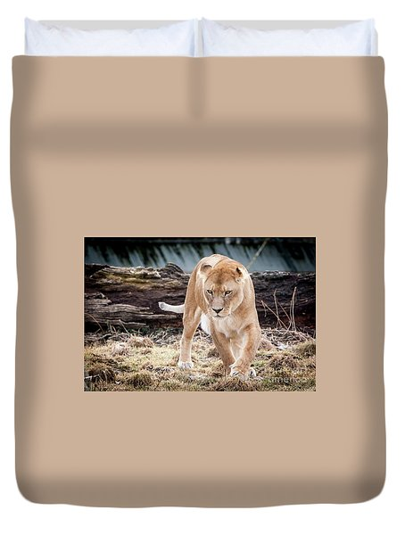 Lion Eyes Duvet Cover