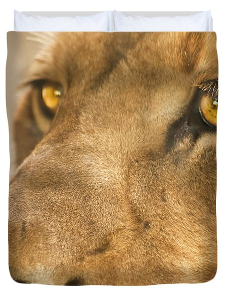 Lion Face Duvet Cover by Carolyn Marshall