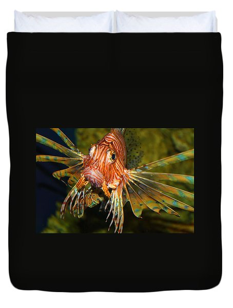 Lion Fish 2 Duvet Cover