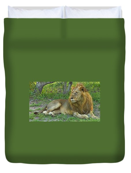 Lion Duvet Cover