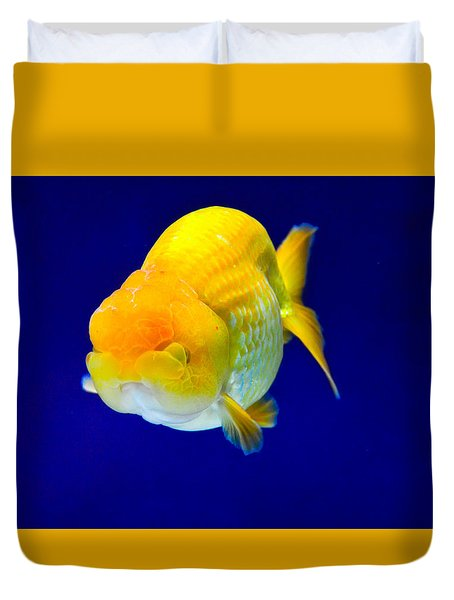 Lion Head Goldfish 5 Duvet Cover