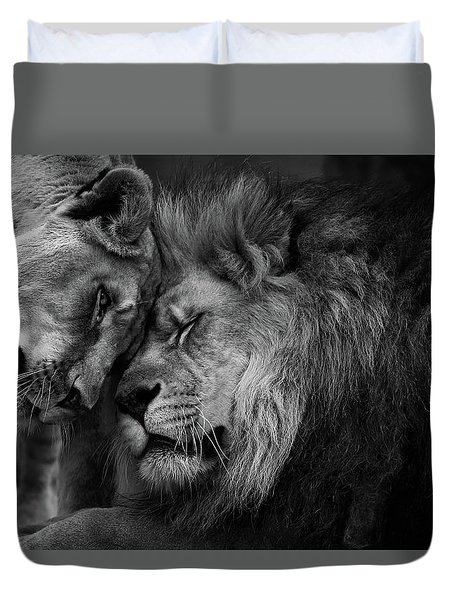 Lion In Love 2 Duvet Cover