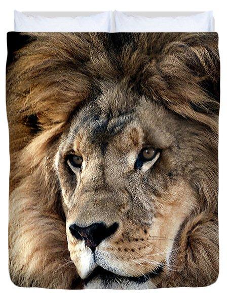 Lion King Of The Jungle 2 Duvet Cover