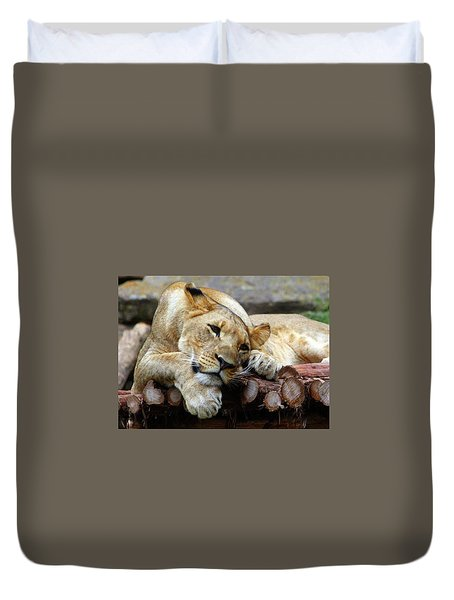 Lion Resting Duvet Cover