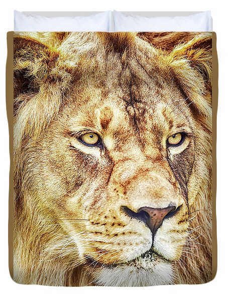 Lion-the King Of The Jungle Large Canvas Art, Canvas Print, Large Art, Large Wall Decor, Home Decor Duvet Cover