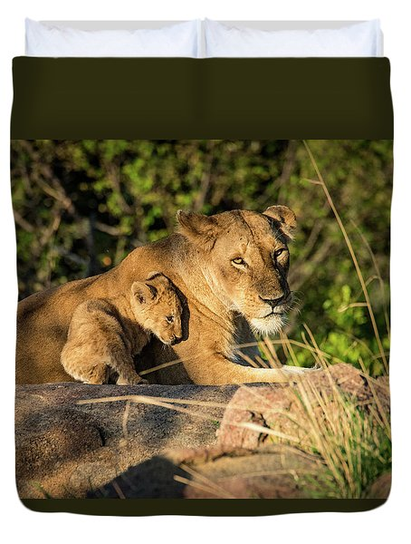 Lioness And Cub 1203 Duvet Cover