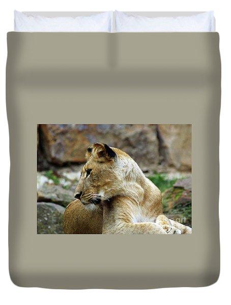 Lioness Duvet Cover