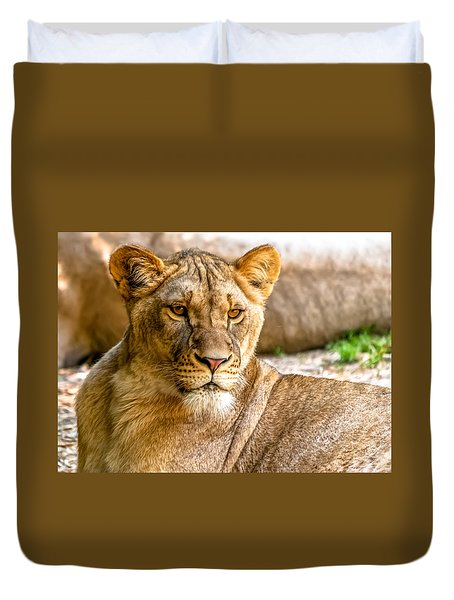 Lioness Duvet Cover by Wayne King