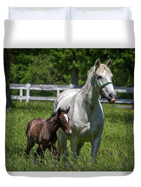 Lipizzan Horses Duvet Cover