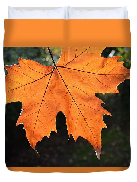 Duvet Cover featuring the photograph Liquid Amber Leaf by Jocelyn Friis