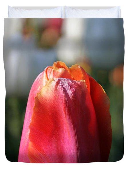 Lit Tulip 03 Duvet Cover