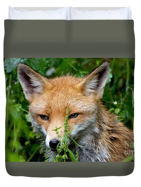 Little Baby Fox Duvet Cover