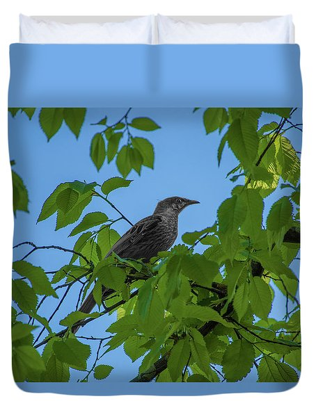 Little Bird In The Tree  Duvet Cover